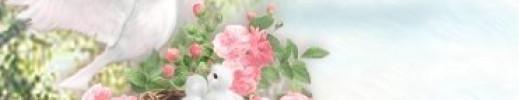 lescolombes2.jpg
