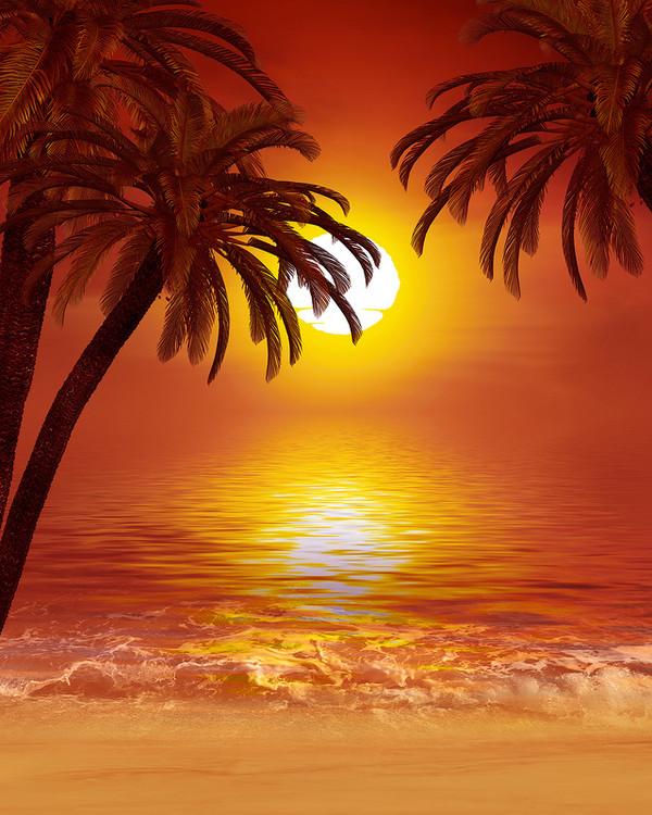 LE BONHEUR C'EST DANS LA POCHE lever-du-soleil